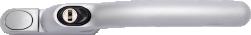 Silver (H-094)
